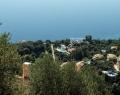 Villa Andonis in Nissaki, Corfu